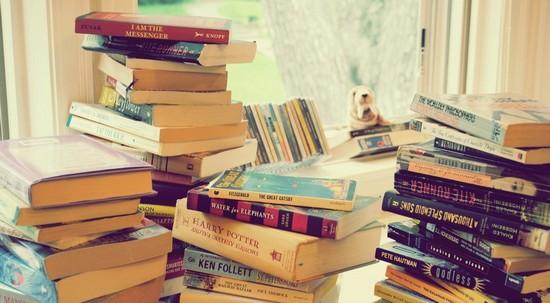 Pile de livres divers