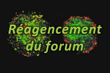 Réagencement du forum